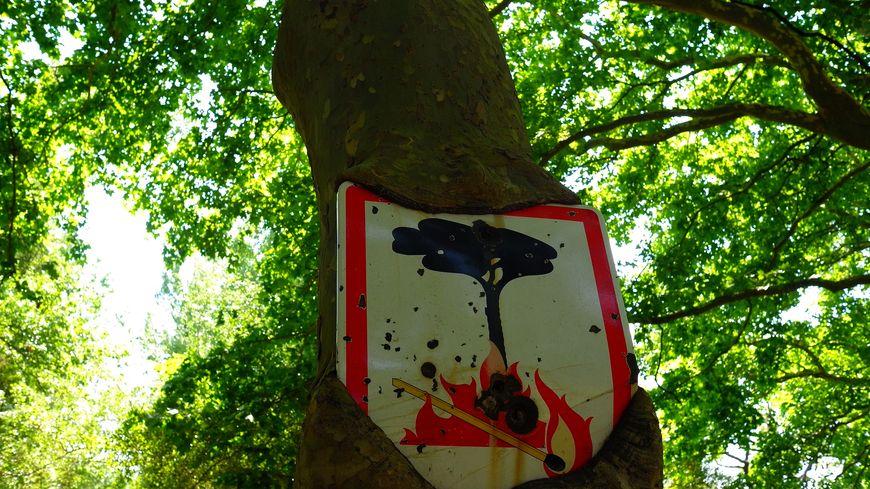 Attention au risque d'incendies en Provence
