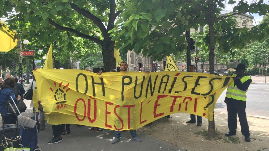 """L'association """"Droit au logement"""" appelle le gouvernement à agir pour éradiquer le fléau des punaises de lit qui prolifèrent en Île-de-France."""