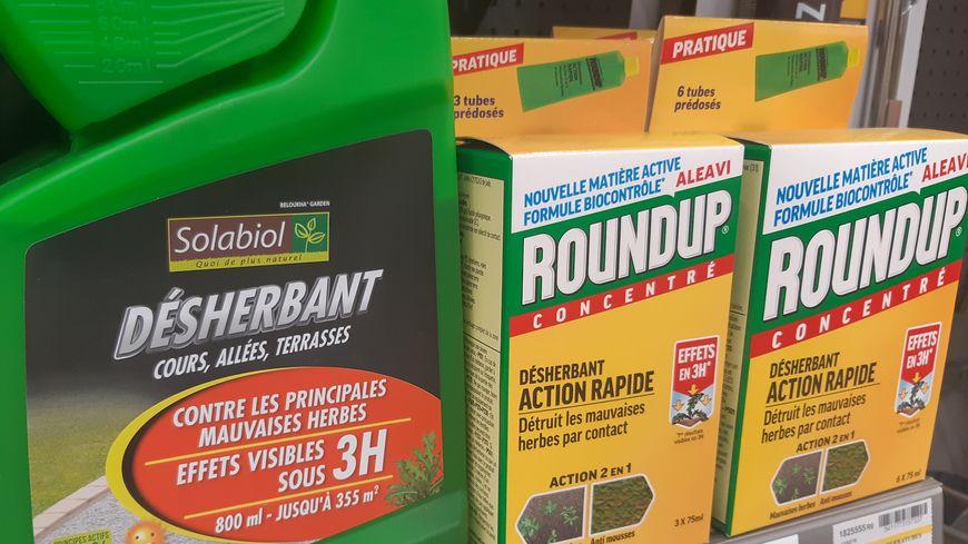 Principe actif d'herbicides comme le Roundup, le glyphosate est suspecté d'être cancérigène