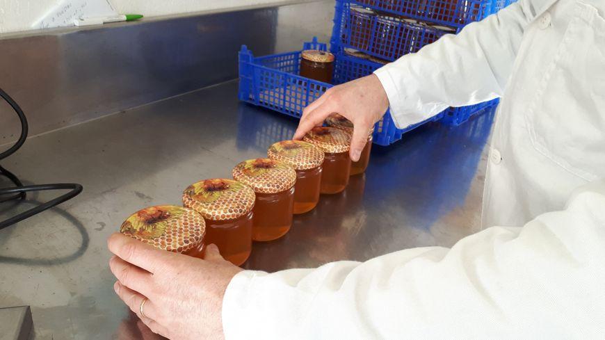 Les apiculteurs ont lancé cette semaine une pétition pour demander un étiquetage plus rigoureux sur le miel. Photo d'illustration