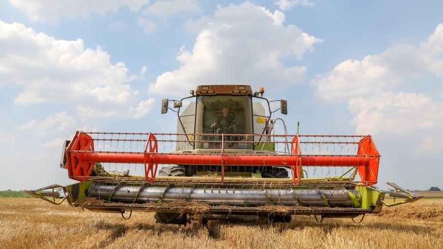 les moissonneuses batteuses débutent la moisson des orges et du colza, bientôt le blé