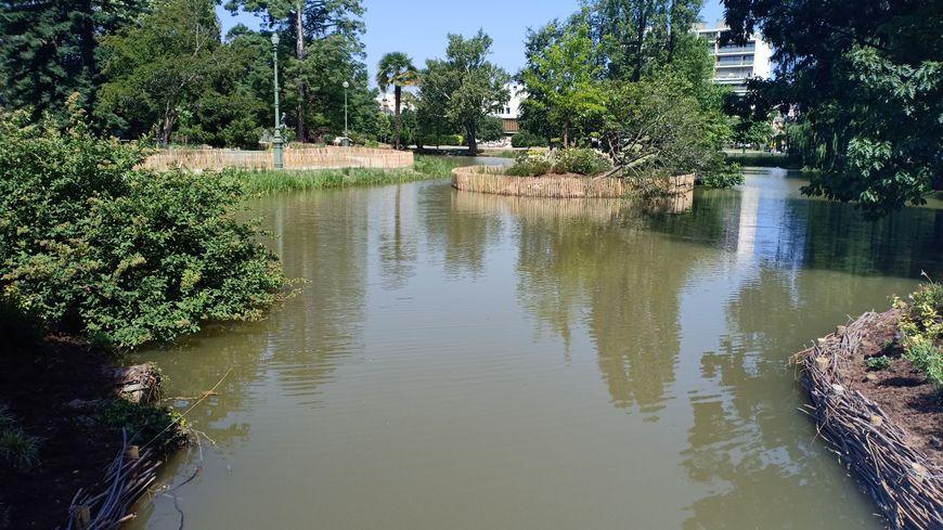 Un îlot flotte au milieu de l'étang.