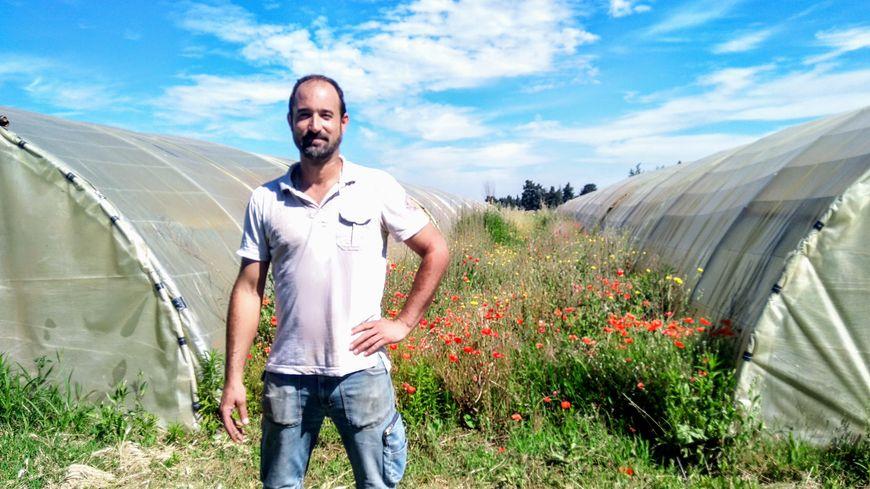 Sébastien Garcia entre deux de ses serres la biodiversité  dans ses champs