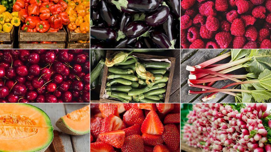 Juin annonce le retour de certains fruits et légumes : cerises, melons, aubergines, courgette...