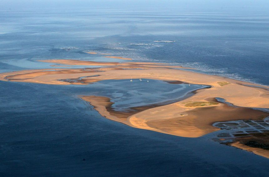 Le banc d'Arguin est classé réserve naturelle depuis 1972.