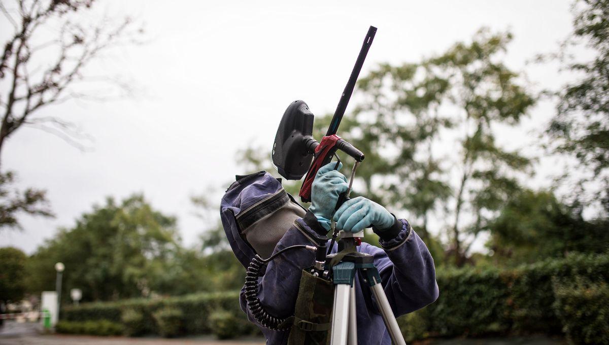 Indre : un pistolet utilisé par les pompiers pour détruire les nids de frelons asiatiques sans danger