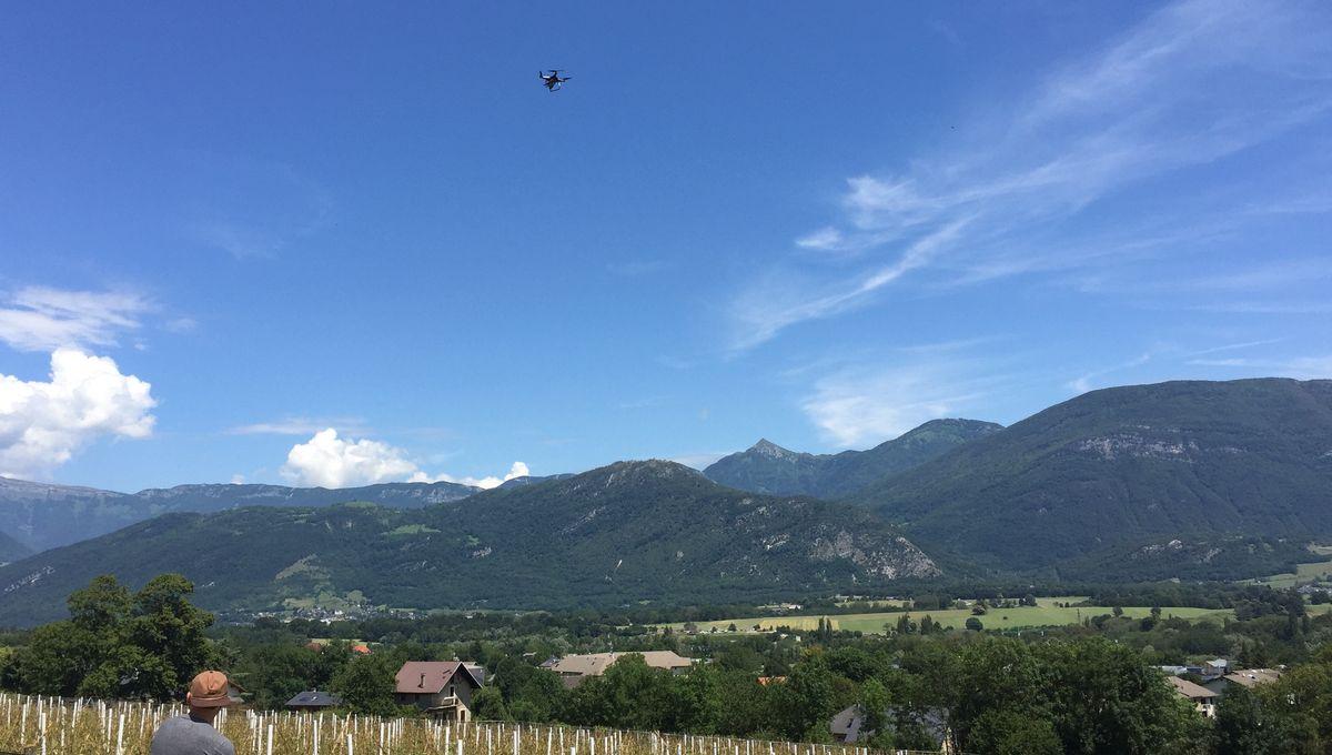 VIDÉO - Les viticulteurs font appel aux drones pour constater les dégâts en Savoie, une semaine après les intempéries