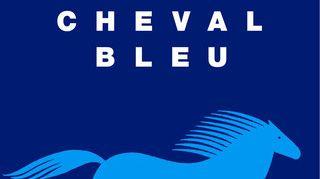 L'association Le Cheval Bleu à Lichos