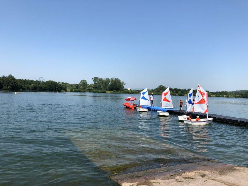 Ces petits voiliers, ce sont des optimists, des bateaux conçus exprès pour les enfants.