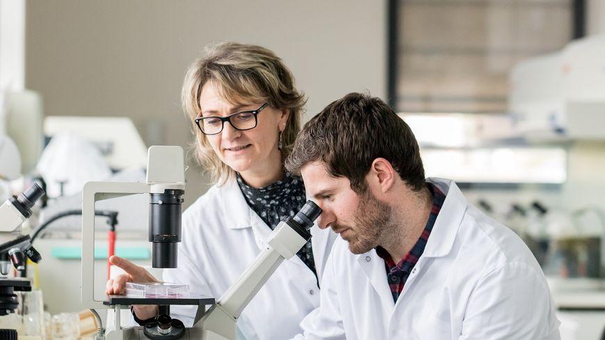 La grande technicité des laboratoires SILAB en Corrèze
