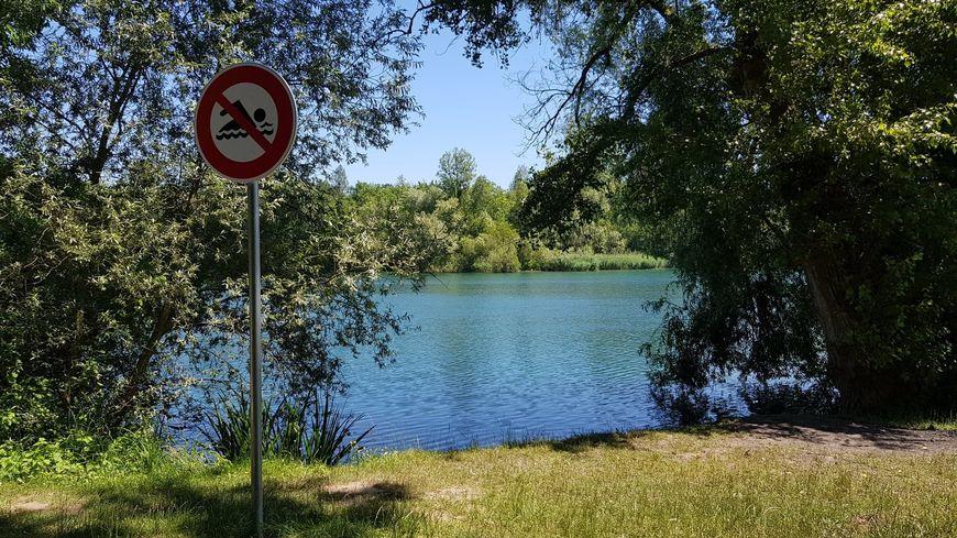Le plan d'eau de la Ballastière, à Bischheim, comprend un espace restreint où la baignade est surveillée.