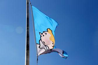 Tintin, Blake et Mortimer, Kirby, les sumos, la mode... Les expositions BD de l'été. Ici dans l'exposition Hergé au Chateau de Malbrouck dans l'Est de la France.