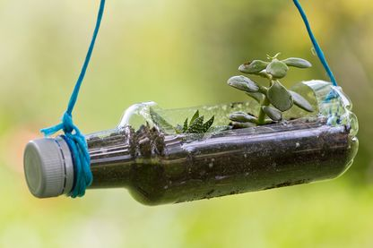 Limiter au maximum sa consommation plastique : un enjeu vital