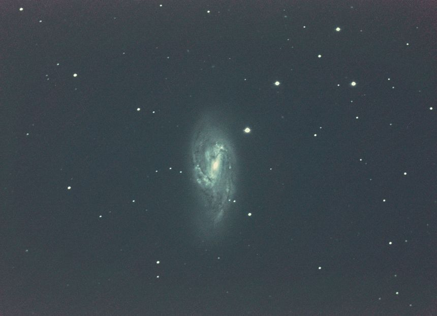 Galaxie M66 le 30 mars 2019. Télescope Celestron 14, focale : 3910mm. 272X10sec en 3200ISO. APN Sony Alpha 7s, © : Philippe Morel, ACF/ObsCF