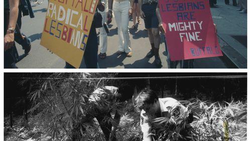 Épisode 37 : Filmer les révoltes LGBT ; la longue histoire de la (dé)pénalisation du cannabis