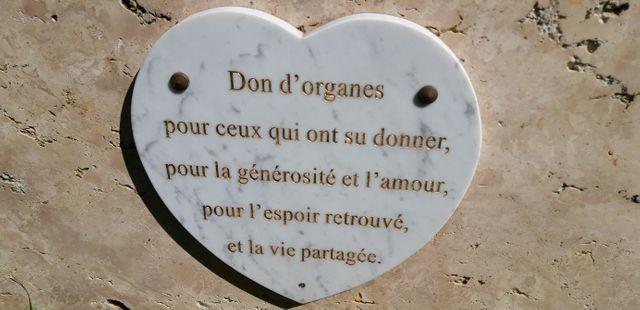 À l'hôpital Cochin, à Paris, cette plaque rend hommage aux donneurs d'organes