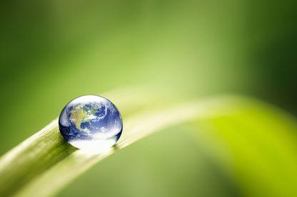 """Avec le """"Plus Grand Défi de l'Histoire de l'Humanité"""", (M. Lafon), l'astrophysicien, Aurélien Barrau appelle à une révolution écologique."""