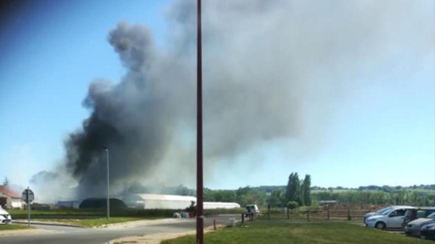 Les flammes ont touché 150 mètres carrés de serres.