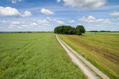 Des chemins pour rapprocher les agriculteurs des citadins