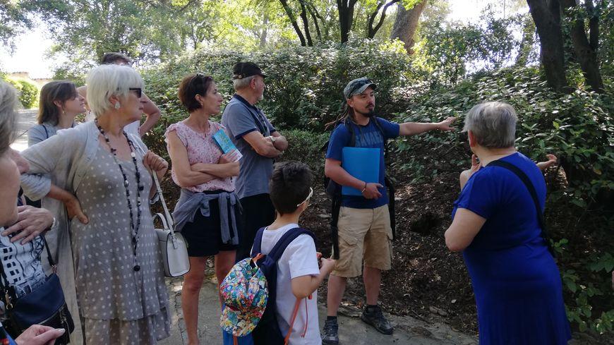 Pendant ces visites guidées, les participants apprennent à reconnaître les choucas mais aussi les mésanges.
