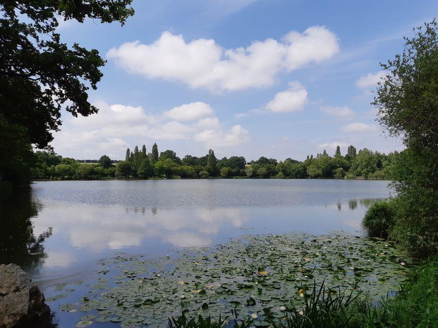 Voilà le type de paysage que les étudiants normands ont découvert en Mayenne
