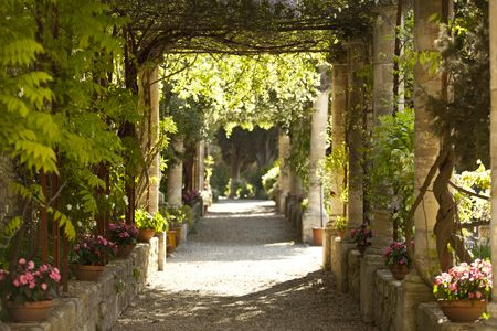 Dans le jardin remarquable de l'abbaye Saint André