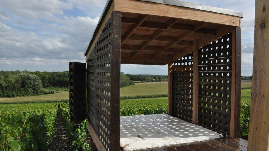 Une quinzaine de loges sont déjà visibles dans les vignobles de la Marne.