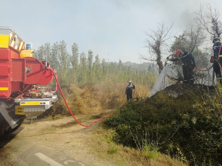 Au moins 90 hectares de végétation ont déjà brûlé