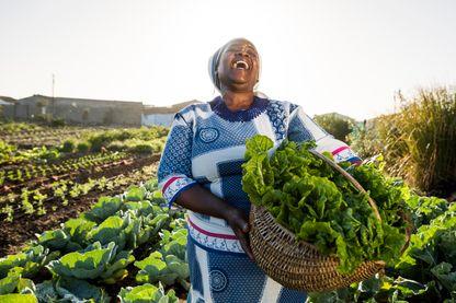 Bon baisers d'Afrique : le récit des bonnes nouvelles.