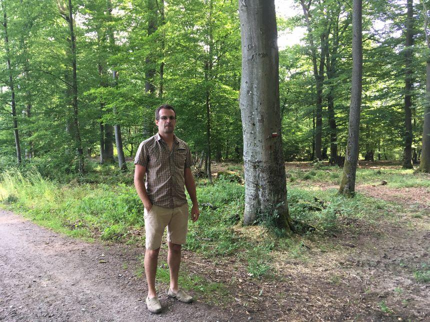 Jean-Baptiste Lusson, président du groupement d'étude et de conservation de la nature en Lorraine dans la forêt d'Oderfang