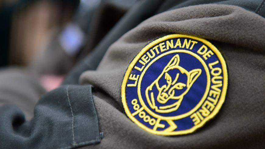 Les lieutenants de louveterie sont des bénévoles. Ils ne sont pas défrayés pour leurs missions.