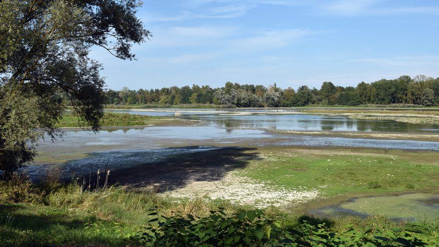 Face à la baisse du niveau des rivières, la préfecture de la Loire renforce les mesures de restriction d'eau