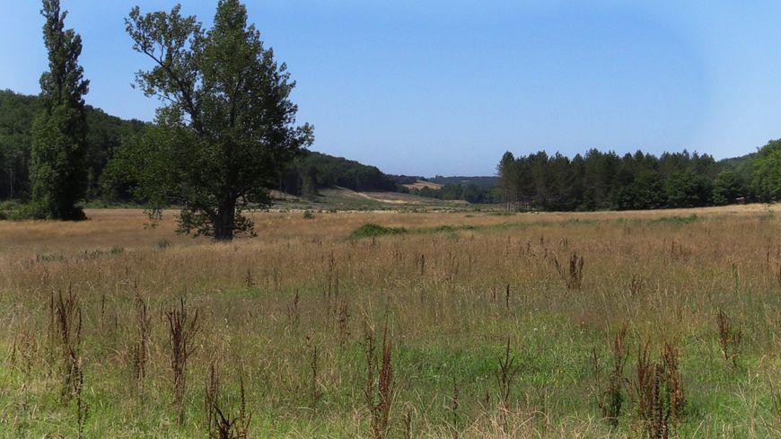 Plusieurs projets ont été proposés sur le secteur du Testet mais celui qui tient la corde ressemble beaucoup au barrage qui a déclenché la polémique