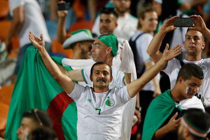 Un supporter algérien pendant la demi-finale de la Coupe d'Afrique des Nations 2019