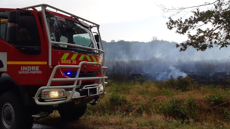 5 hectares de végétation ont brûlé, c'est le troisième départ de feu sur cette parcelle de la forêt en moins d'un mois