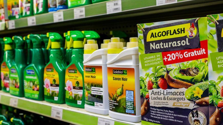 Interdiction de pesticides de synthèse chez les particuliers. Photo d'illustration