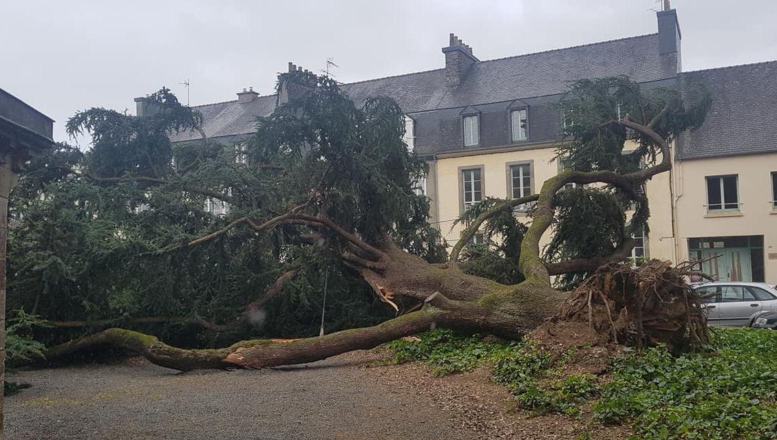 Coup de vent : le point sur les dégâts en Bretagne