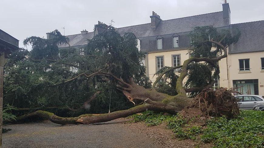 Un arbre est tombé près de l'église Saint-Houardon à Landerneau.