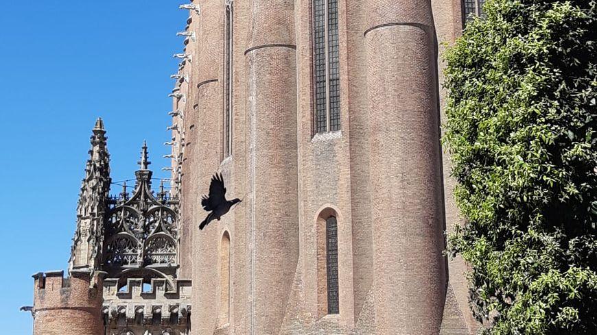 La cathédrale d'Albi, un des sites patrimoniaux les plus visités d'Occitanie.
