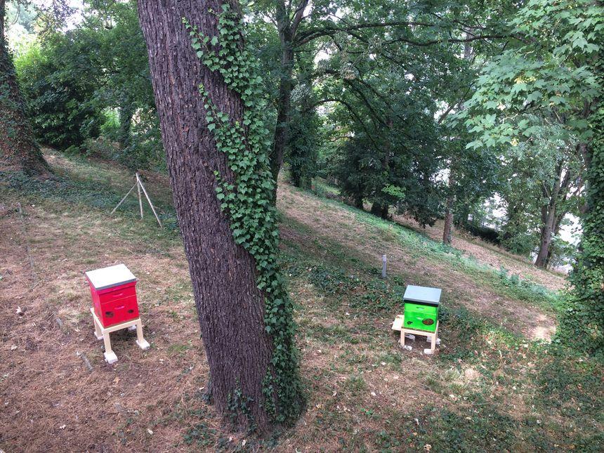 Deux des ruches installées au printemps dans les jardins des Carmélites