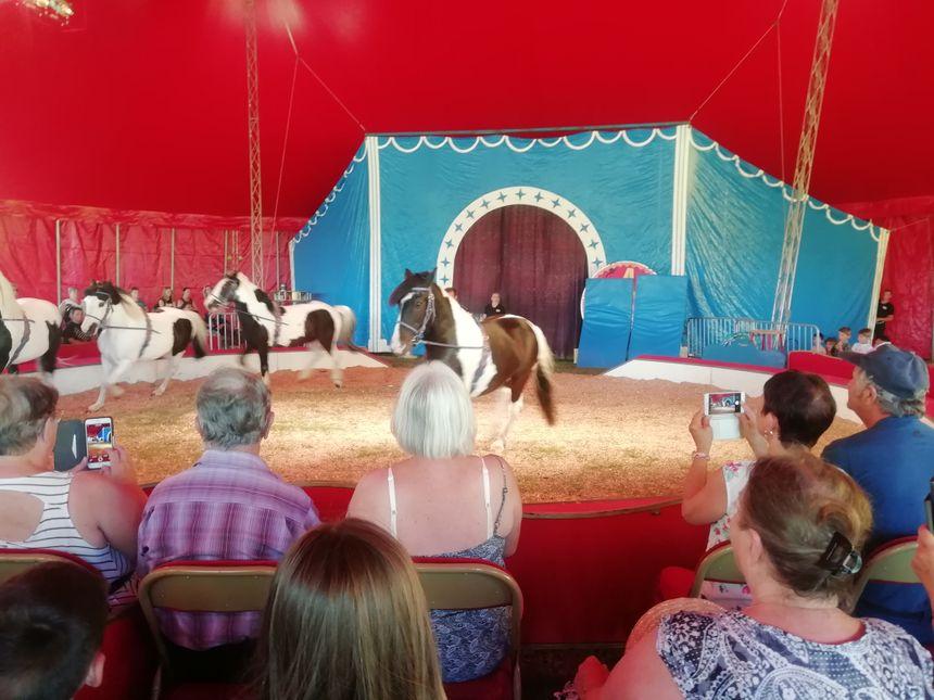 Parents et enfants captivés devant le spectacle de chevaux du cirque