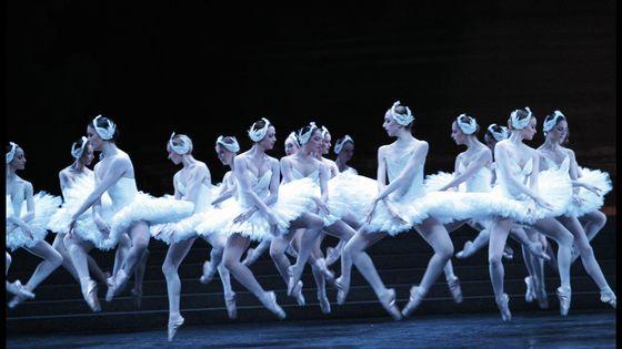 Les danseuses de l'opéra de Paris dans le Lac des cygnes