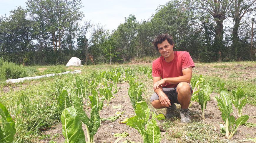 Nathanaël Jacquart produit des fruits et légumes bio à Luzillat, dans le Puy-de-Dôme.