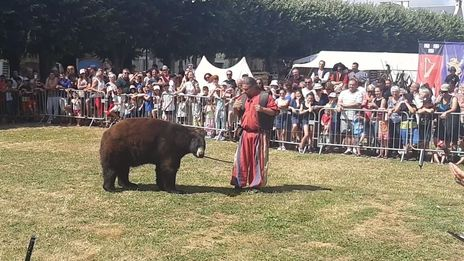 VIDÉO - A Lusignan, le spectacle d'ours a bien eu lieu malgré l'opposition d'associations de défense des animaux