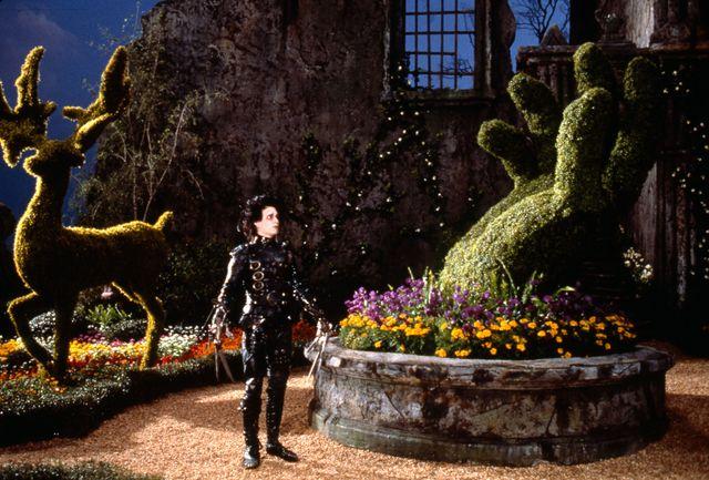 Johnny Depp, sur le tournage d'Edward aux mains d'argent, son premier grand rôle au cinéma, que lui a donné Tim Burton (Edward Scissorhands, 1991.