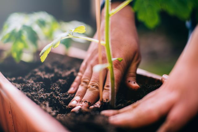 Jardiner, un plaisir avant tout ?