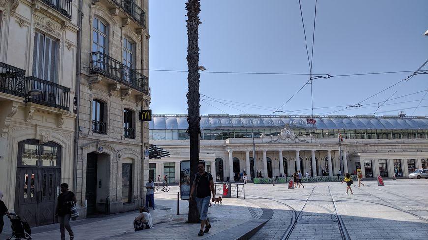 L'altercation a eu lieu rue Maguelone près de la gare Saint Roch de Montpellier