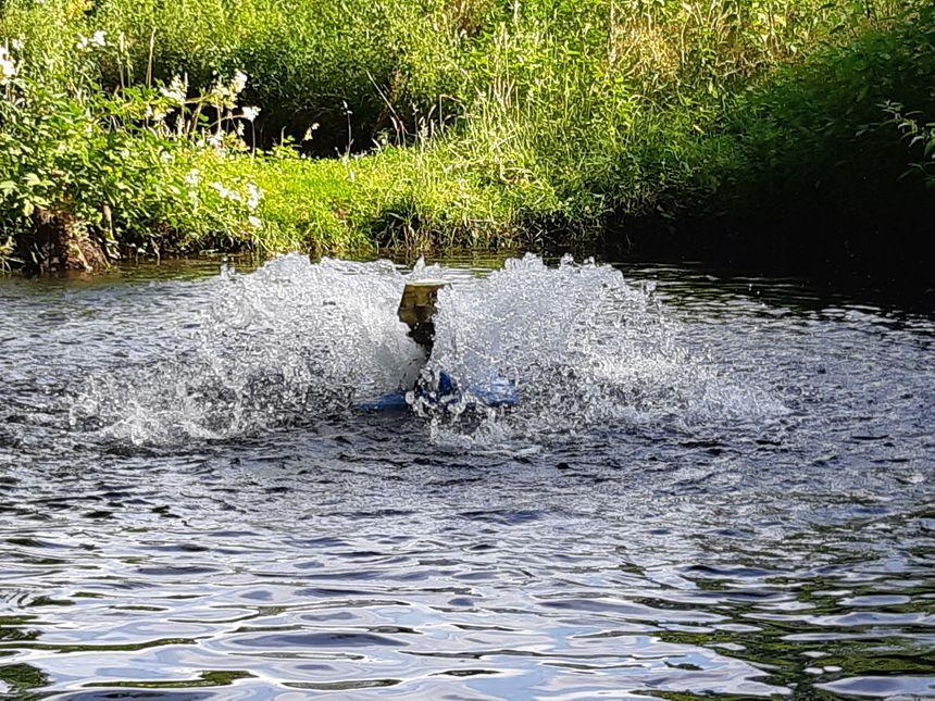 Les aérateurs comme celui-ci permettent d'apporter de l'oxygène aux poissons