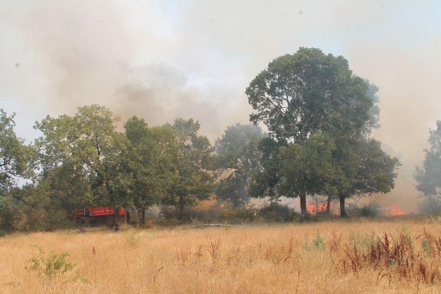 L'incendie a pris dans une végétation très sèche