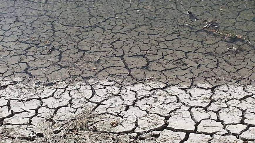 Même le lit de certaines rivières ne résiste pas à la sécheresse